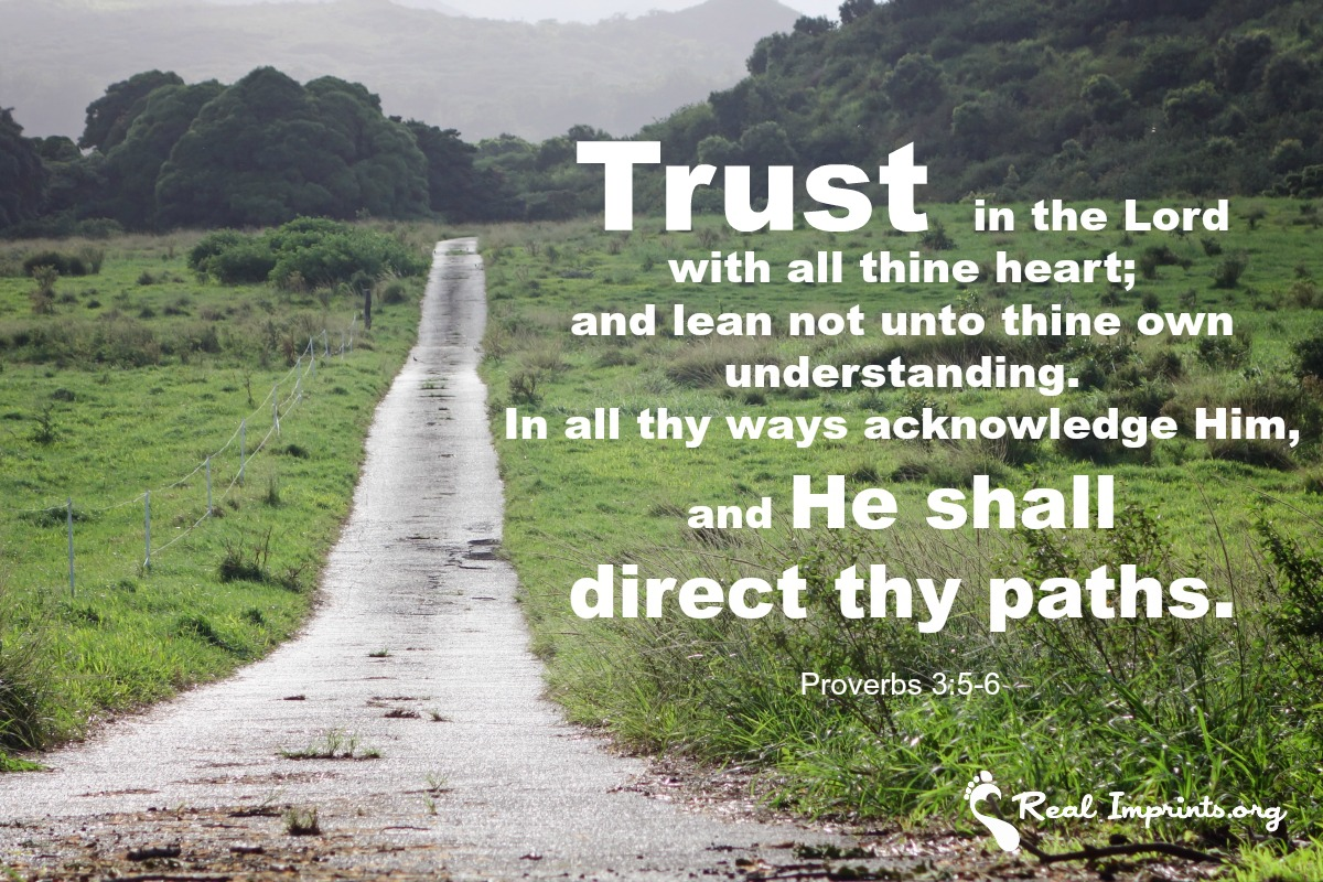 trust in the lord real imprints